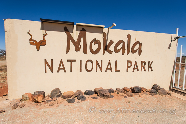 Mokala Entrance Sign by wildlife and conservation photographer Peter Chadwick