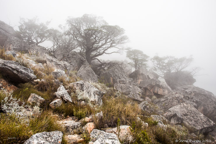 | Cederberg Hiking | Photodestination | ©Arne Purves