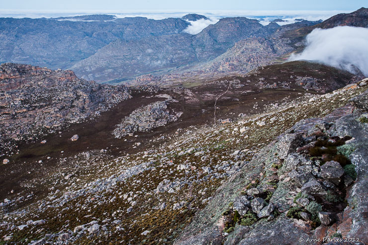 Tafelberg View | Cederberg Hiking | Photodestination | ©Arne Purves