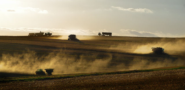 Harvest | Liesell Kershoff | Photodestination