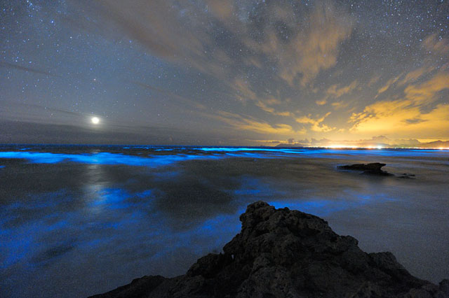 Phosphorus Walker Bay | Liesell Kershoff | Photodestination