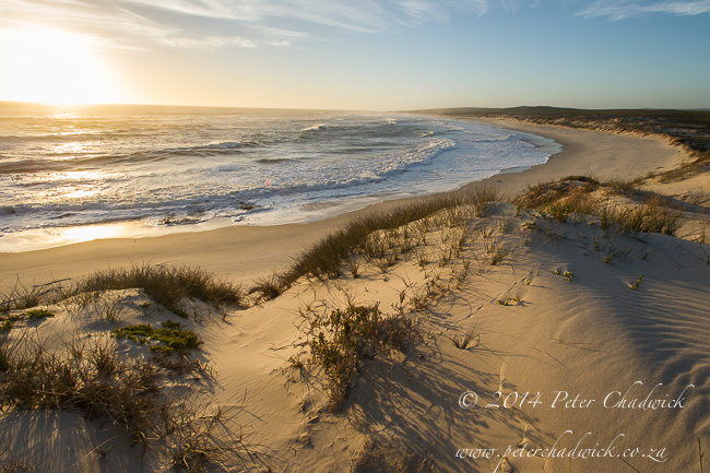 Northern Cape coastline by wildlife and conservation photographer Peter Chadwick