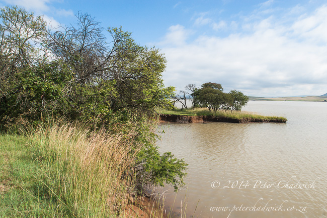 Spioenkop dam by wildlife and conservation photographer Peter Chadwick