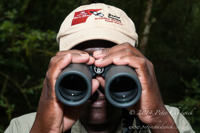 Birdwatching with binoculars by wildlife and conservation photographer Peter Chadwick