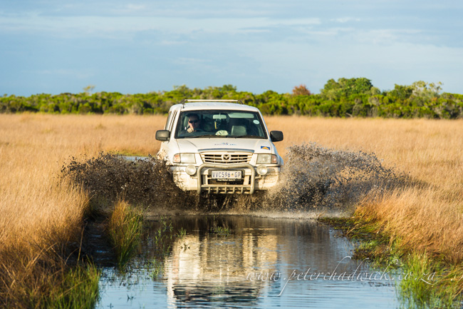 Driving through waterlogged roads by wildlife and conservation photographer Peter Chadwick