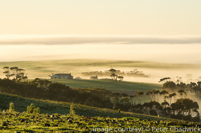 Overberg farmstead by wildlife and conservation photographer Peter Chadwick