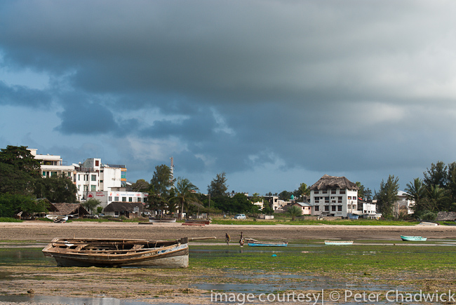 malindi beach front at low tide by wildlife and conservation photographer peter chadwick
