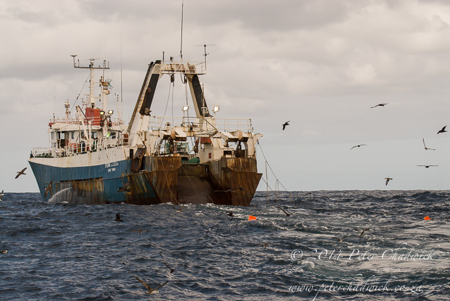 hake trawler with tori lines by wildlife and conservation photographer Peter Chadwick