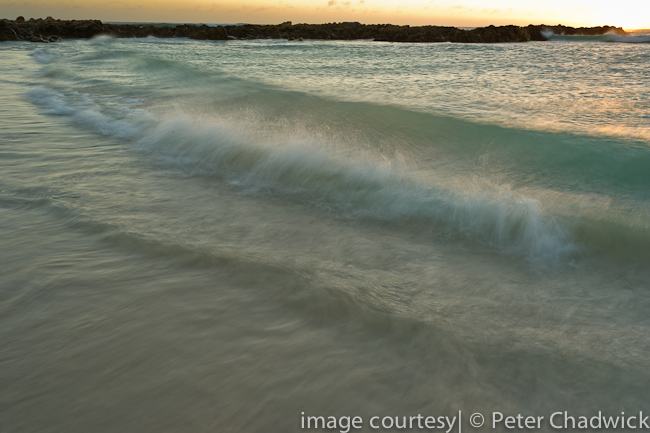 wave scape by wildlife and conservation photographer Peter Chadwick