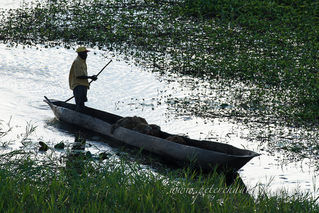 Mozambican poling his dugout canoe by wildlife and conservation photographer Peter Chadwick