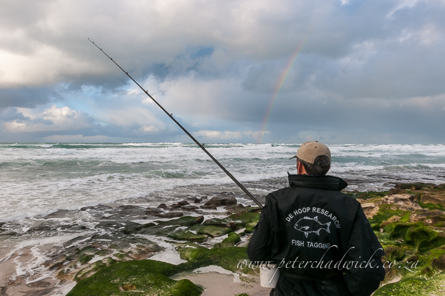 Fish research project at De Hoop Marine Protected Area by wildlife and conservation photographer Peter Chadwick