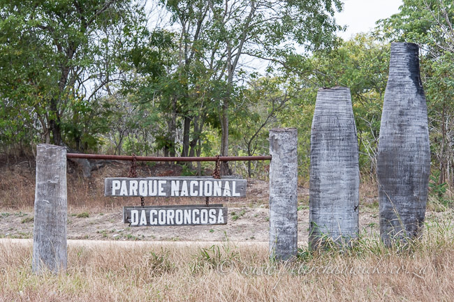 entrance to gorongosa national park by wildlife and conservation photographer Peter Chadwick