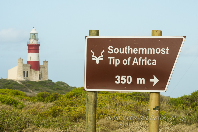 southern tip of africa wildlife and conservation photographer peter chadwick
