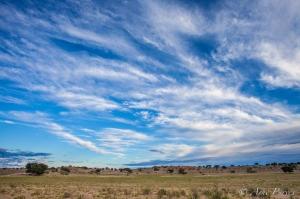 Pre-dawn Kgalagadi | Landscape Photography | ©Arne Purves