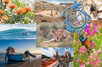 World Wildlife Day 2014 | #conservationphotography | African Conservation Photodestinations