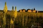 Papkuilsfontein Farm